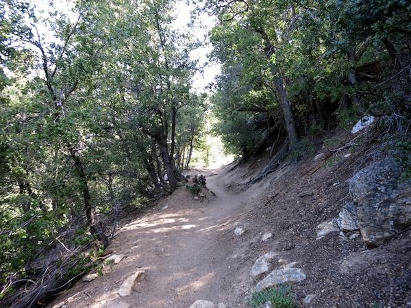 Devil's Slide Trail