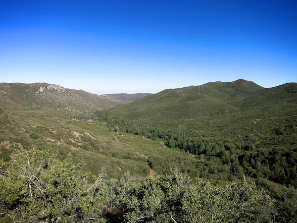 Mt Laguna area view