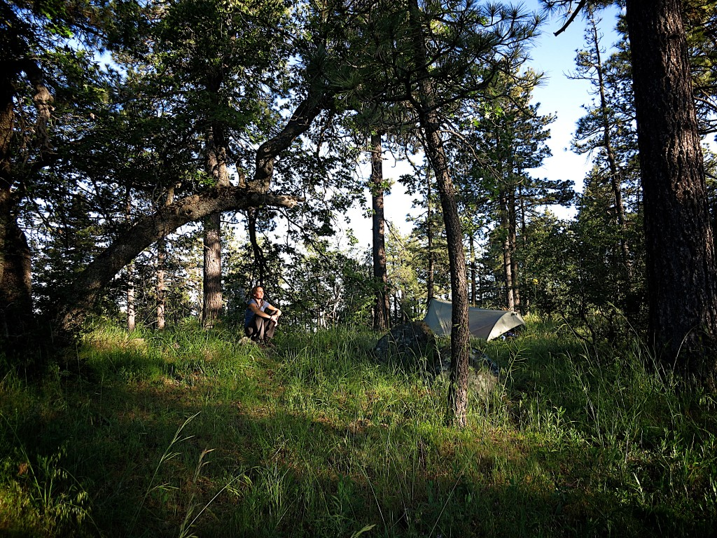 Kid-Hikes-PCT-Mt-Laguna 15