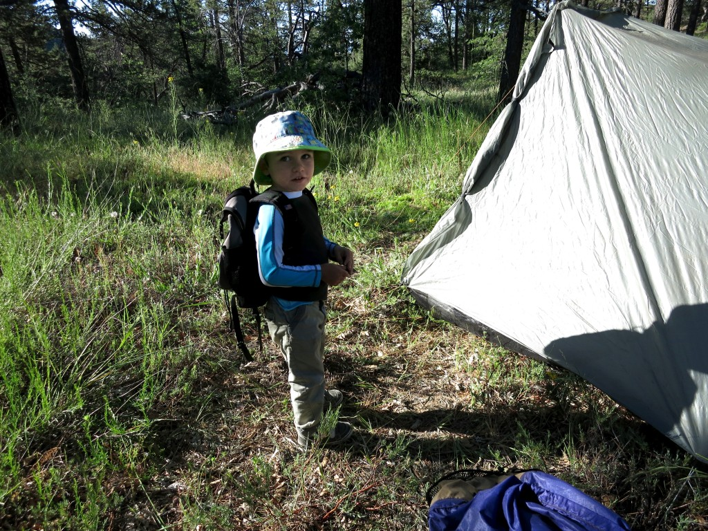 Kid-Hikes-PCT-Mt-Laguna 21