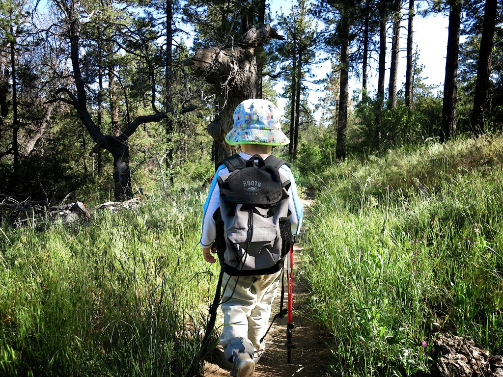 Kid-Hikes-PCT-Mt-Laguna 28