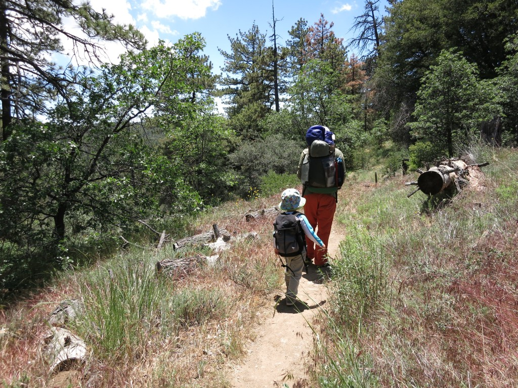 Kid-Hikes-PCT-Mt-Laguna 6