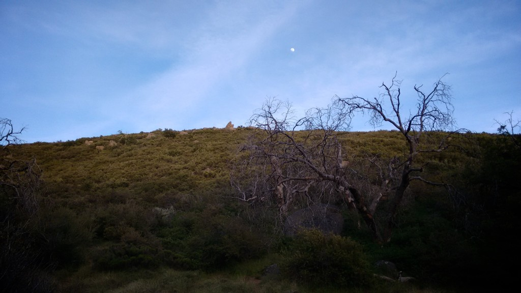 Moonrise near Long Creek