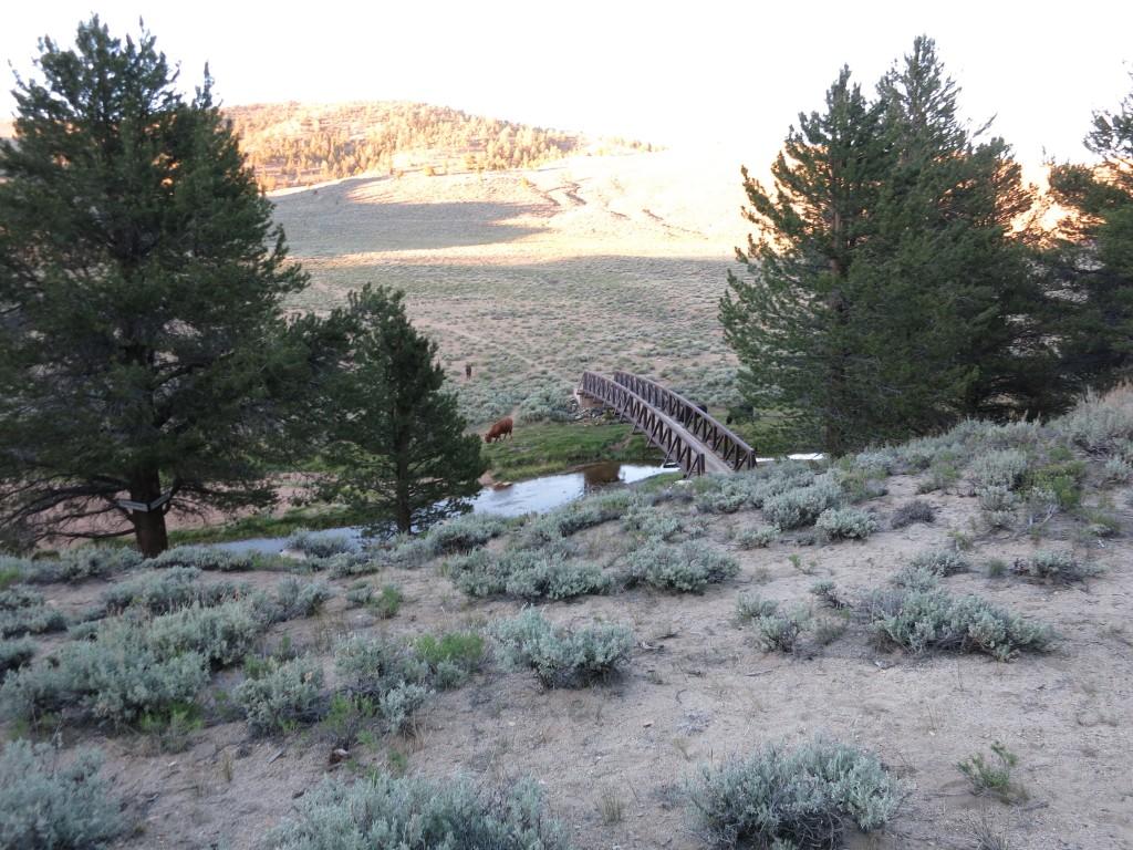 Hike-Kennedy-Meadows 22
