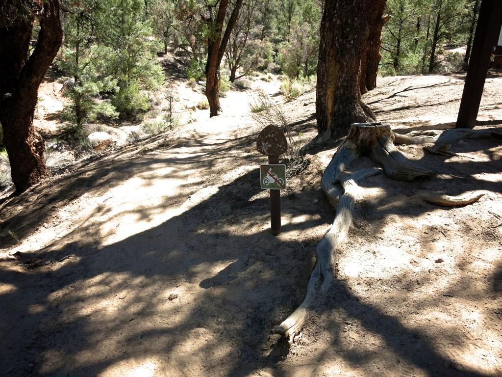 Hike-Kennedy-Meadows 3