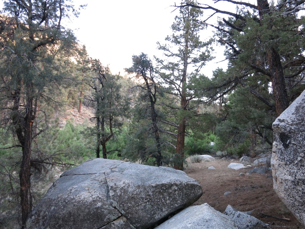 Hike-Kennedy-Meadows 36