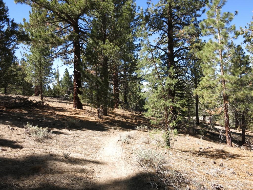 Hike-Kennedy-Meadows 9