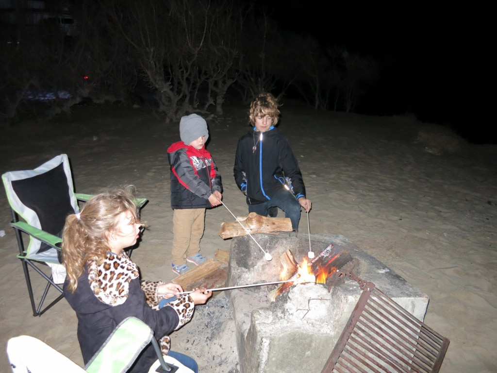 Roasting marshmallows for 'smores.
